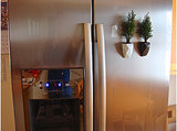 Fridge Planter