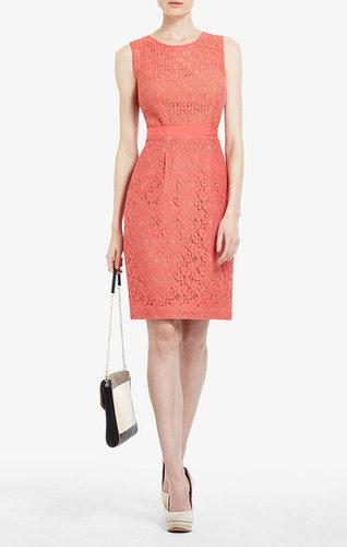 Alice Lace Sheath Dress
