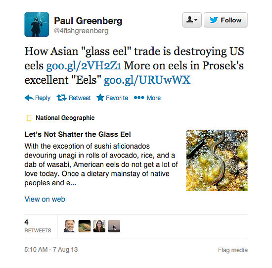 Who to Follow: Paul Greenberg