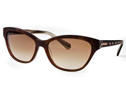 Balmain Paula Sunglasses in Brown and Light Brown