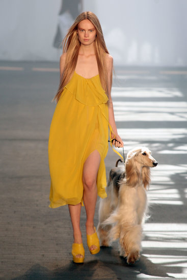 Every Dog Deserves a Good (Hair) Day at Jen Kao
