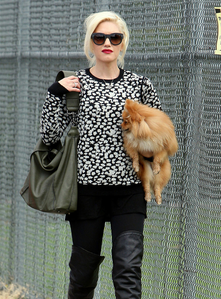 Gwen Stefani carried her dog.