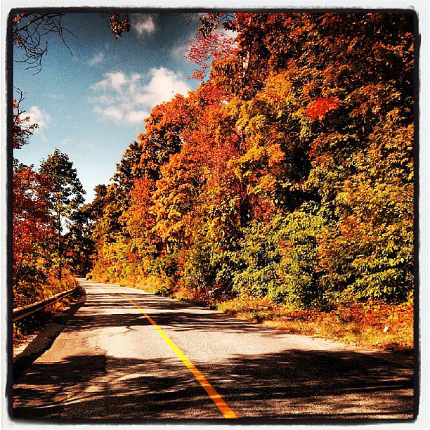Cruise For Fall Foliage