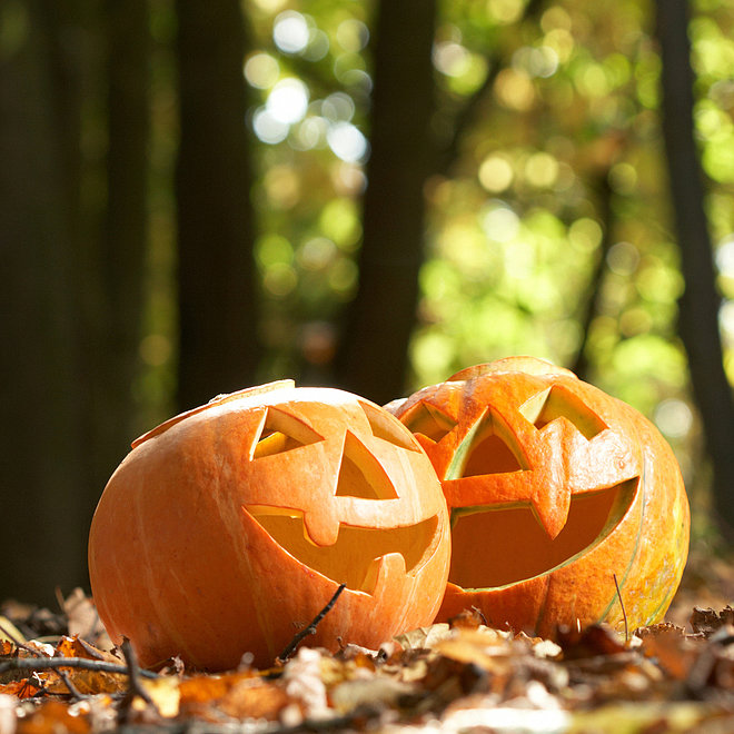 5 Tips to Keep the Halloween Spirit Alive in a Costume-Free Office