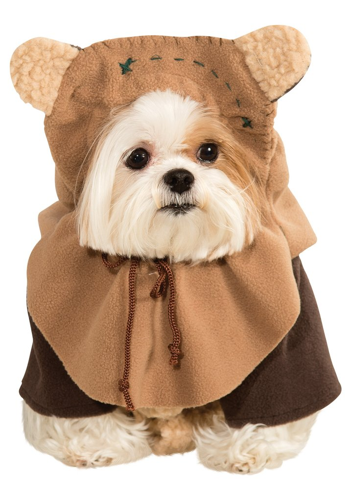Ewok Adorable