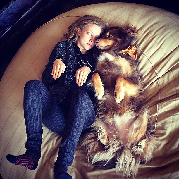 Amanda Seyfried and her dog were good for a chuckle.  Source: Instagram user mingey