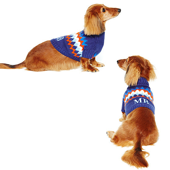 If you've got someone on your list who's a big-time dog lover, nothing will delight them more than a customized sweater for their prized pup. C. Wonder put a cheeky spin on a classic knit with this canine style ($28).