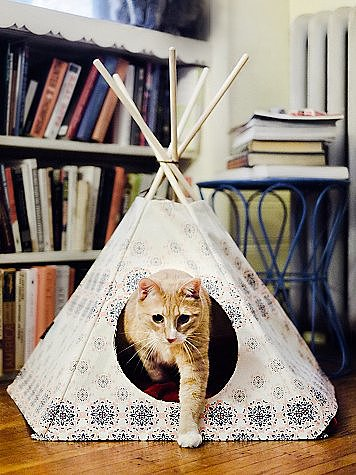 The pet version of glamping, this Free People printed cat tipi ($88), handcrafted in California from 100 percent cotton canvas, helps your kitty get in touch with its wild side.