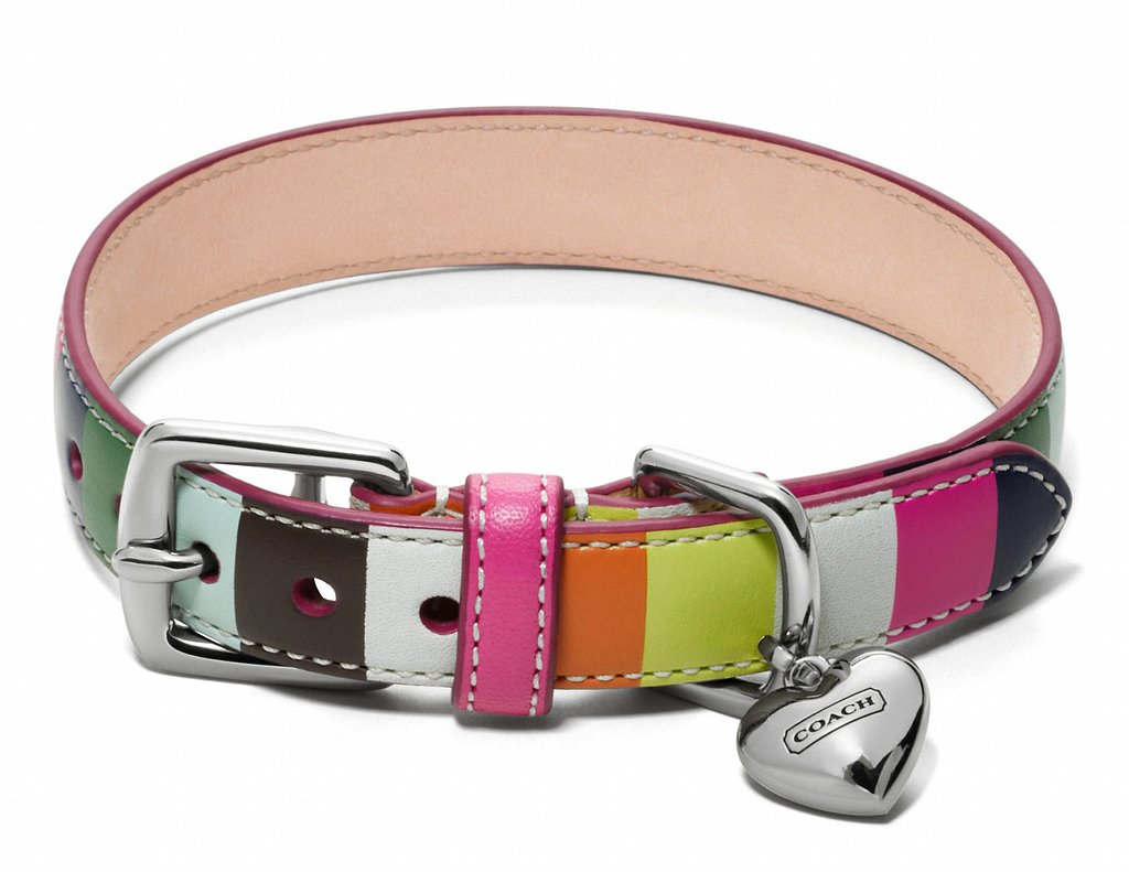 For the traditional pet who still wants to stand out from the crowd at the dog park, this colorful Coach leather collar ($88) uses the brand's original Legacy Stripe pattern.