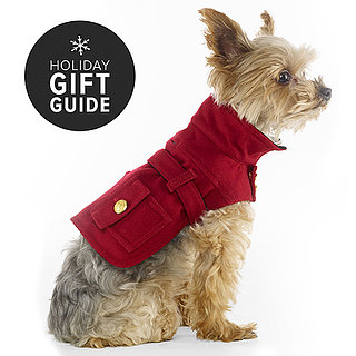 Pet Fashion Gifts