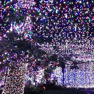 Guinness World Record For Most Holiday Lights 2013
