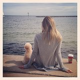 Ashley Tisdale enjoyed the view with her pup Maui.  Source: Instagram user ashleytis