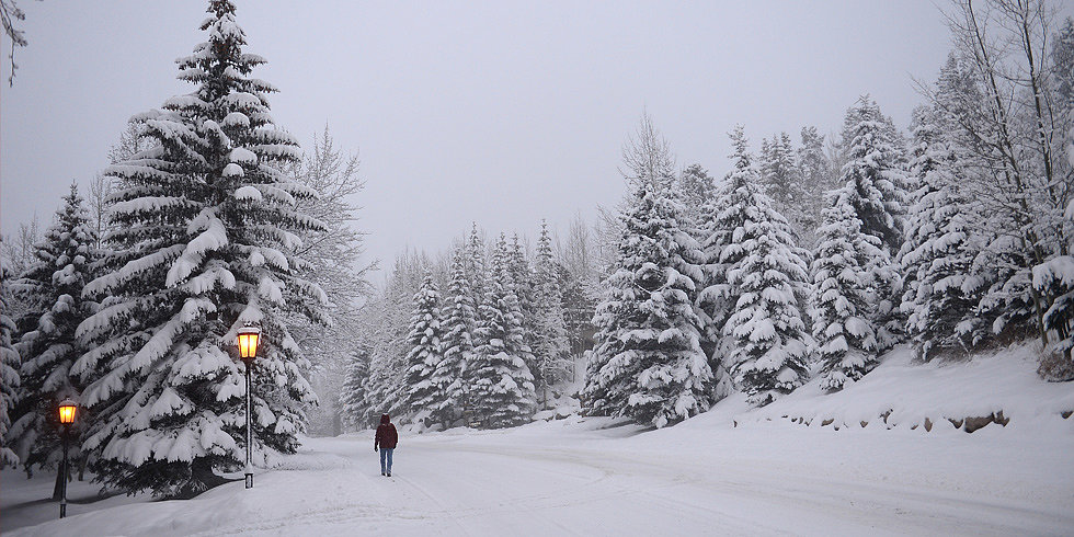 Brace Yourselves: 5 Apps That Know When Winter Is Coming