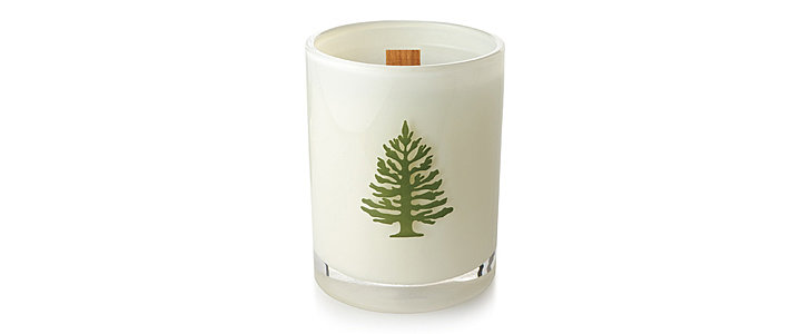 Just in Time — a Freshly Cut Christmas Tree in a Candle