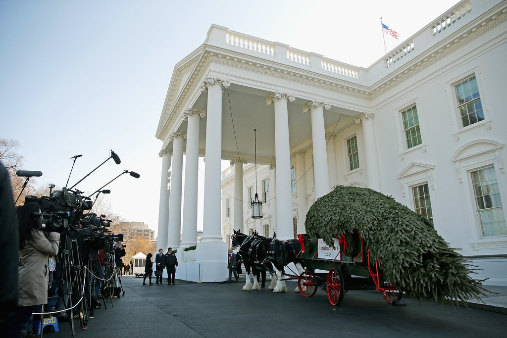 First, They Got an 18-Foot Christmas Tree Delivered by a Horse-Drawn Carriage