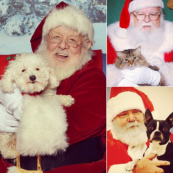 Happy Holidays! Pets Sitting on Santa's Lap
