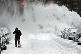 A man and his dog braved chilly temperatures and blowing snow in Brooklyn after eight inches fell in the NYC borough.