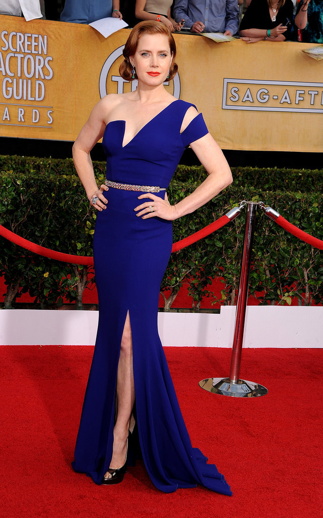 Amy Adams struck a pose in her blue Antonio Berardi gown.