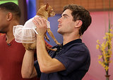 Here's Zac Efron, Kissing a Dog in a Dress