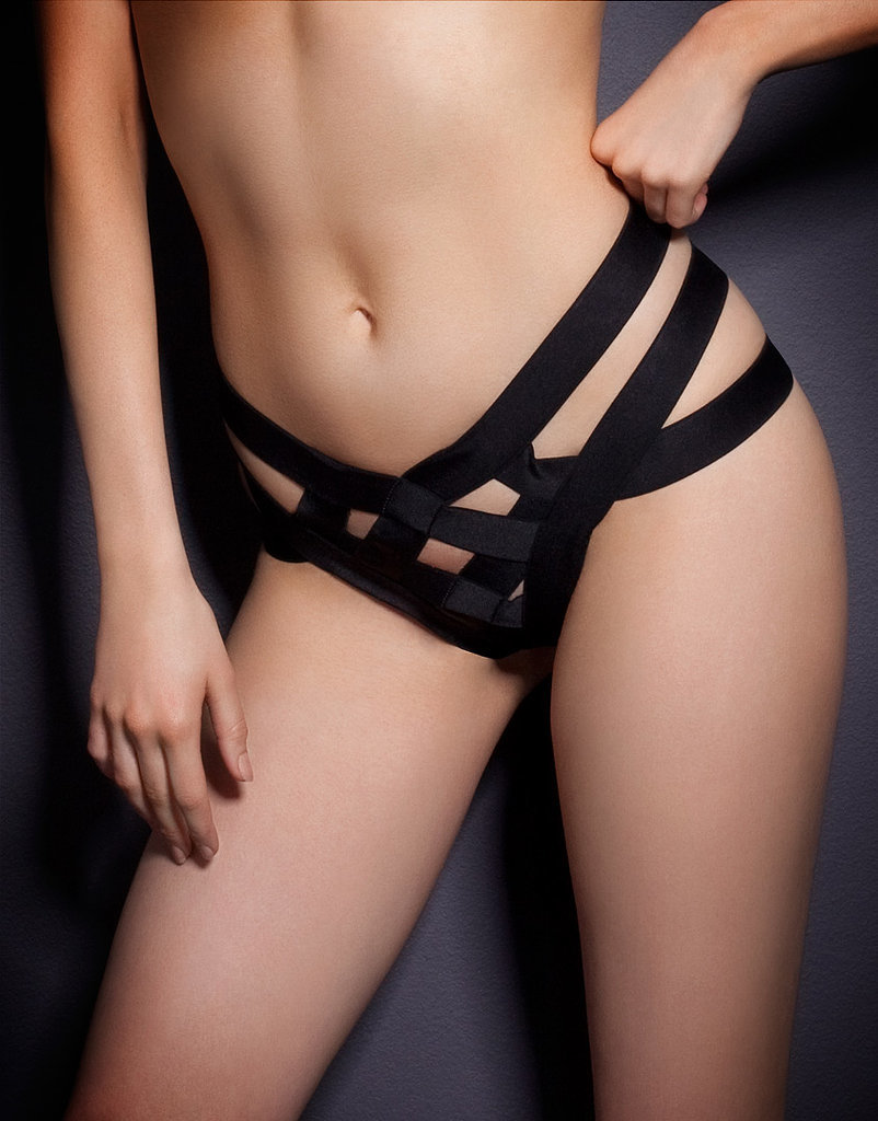 Agent Provocateur Whitney Brief ($190)