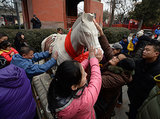 A horse statue was on display in Beijing to honor the Year of the Horse.