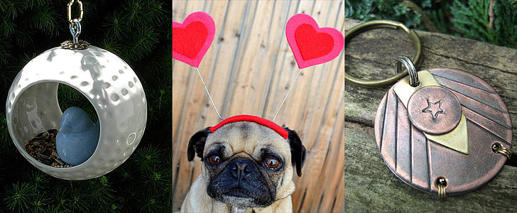 Show Your Animal Love This February