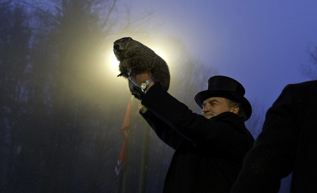 Surprise! Punxsutawney Phil Saw His Shadow