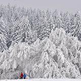 Die besten Bilder des Winterwetters