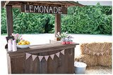 Homemade Lemonade Stand