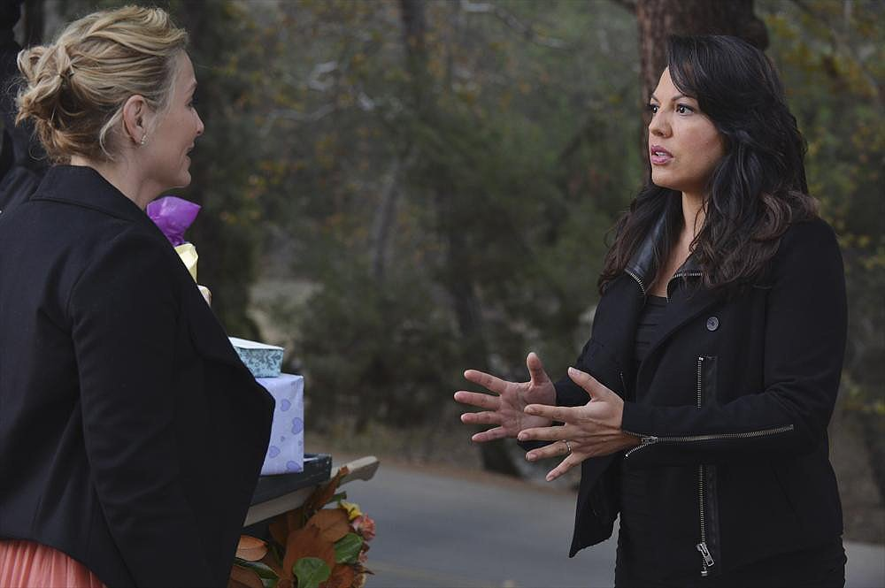 Callie and Arizona: Buying a House