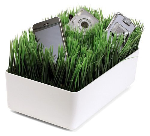Green Grass Charging Station