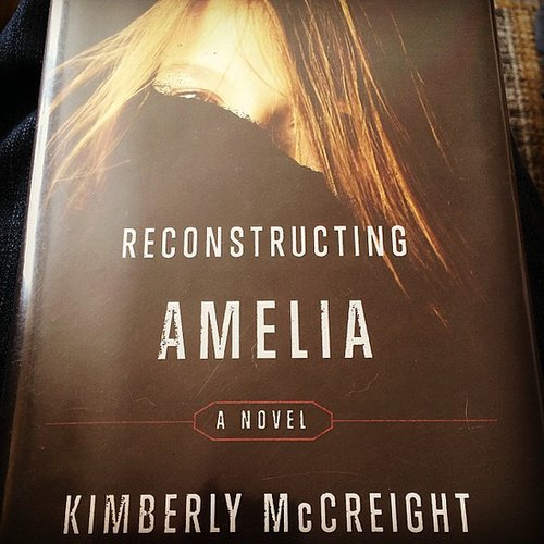 """Definite page-turner,"" said mermcw of Reconstructing Amelia."