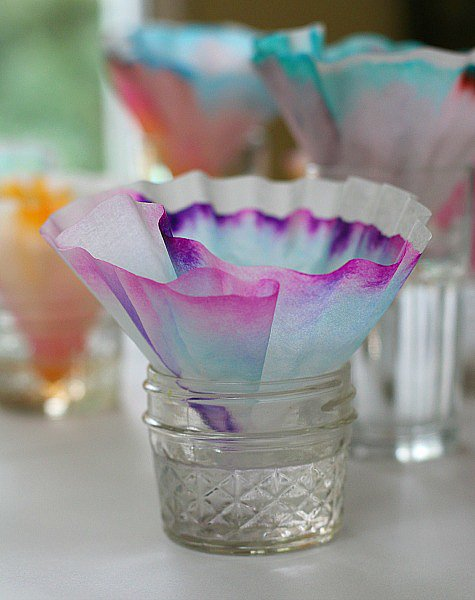 Chromatography Butterfly Craft