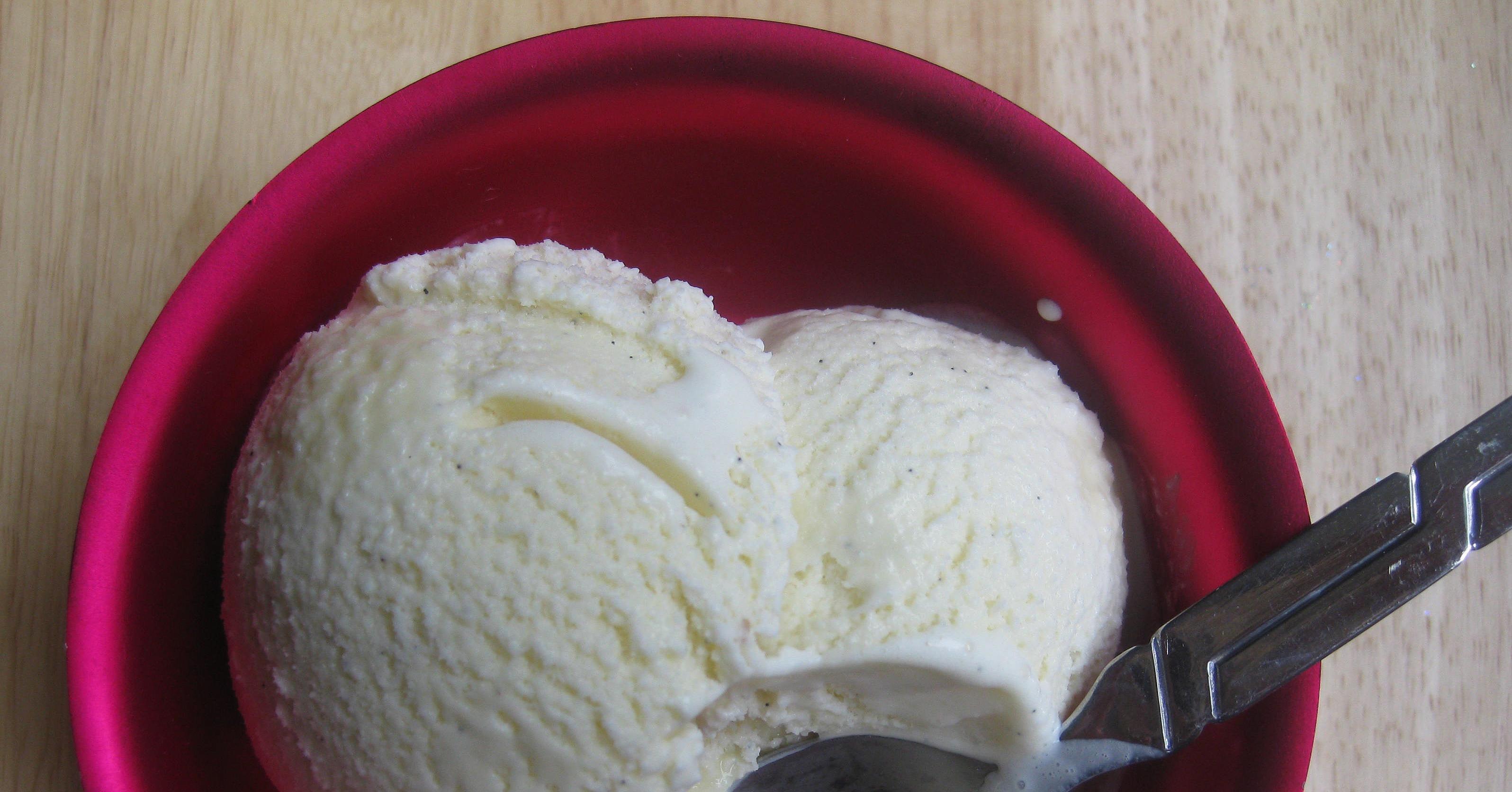 Homemade Vanilla Bean Ice Cream Recipe | POPSUGAR Food