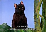 And 18 years ago, we first met Sabrina the Teenage Witch. We miss you, Salem.