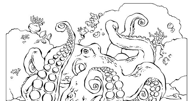 national geographic animal coloring pages - photo#3