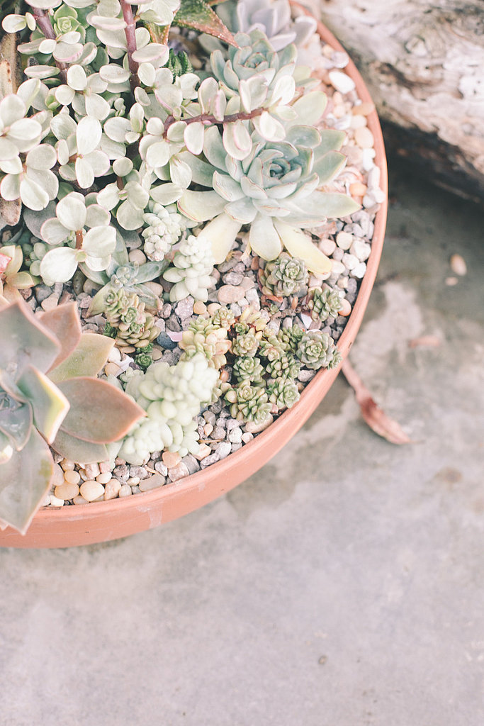 Instead of florals, consider a succulent arrangement. Succulents have a desert vibe and are easy to maintain.  Photo by  Onelove Photography via Style Me Pretty