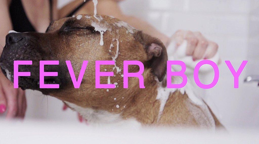 """Fever Boy"" by Femme"