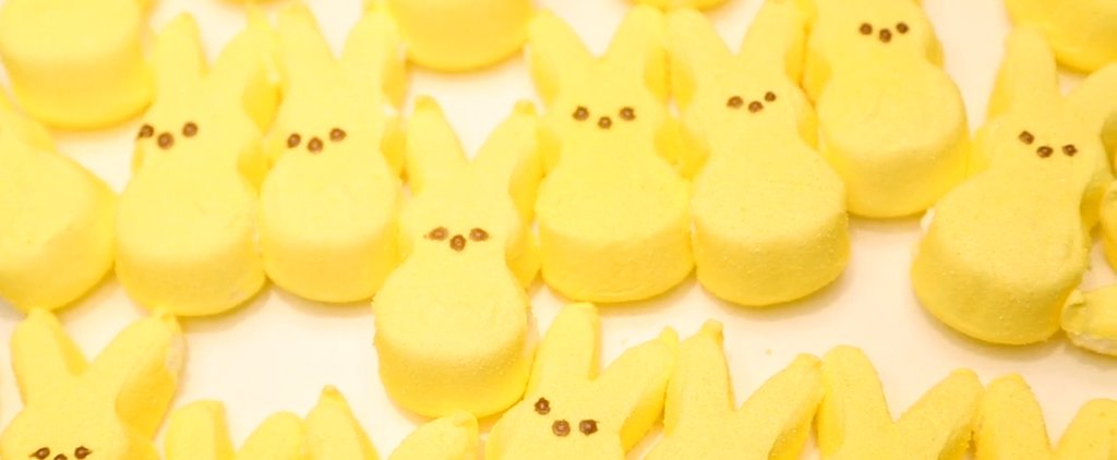 Peeps Explain Why You Don't Want a Big Tax Refund