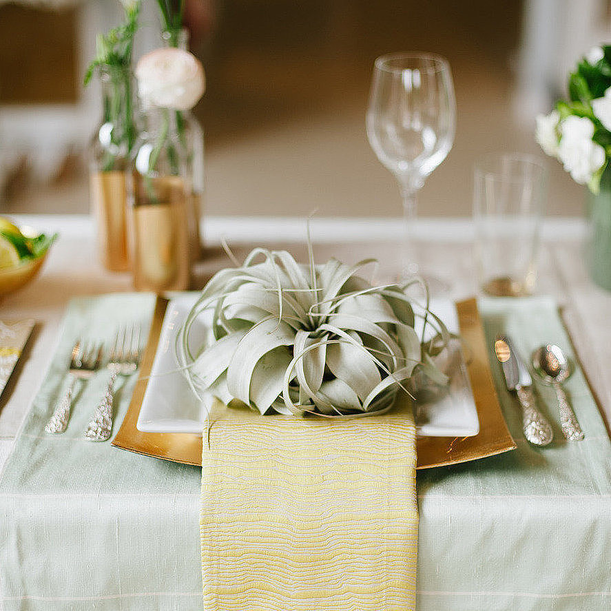 Could it be something green is the new something blue? No matter the shade, incorporating green into your color palette can be used to bring a sense of fresh sophistication to a wedding. Whether you're looking to use green as an updated neutral or for a burst of color, there are endless possibilities. Inspired by real weddings, POPSUGAR Home came up with  seven ideas to use the lucky hue on your big day! Photo by  Christine Sargologos Photography via Style Me Pretty