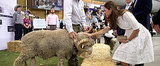 "The Royals Experience ""Shear"" Joy With Fred the Ram"
