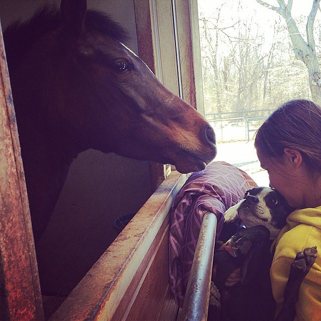 Grace Burns spent some time in the stables.  Source: Instagram user cturlington