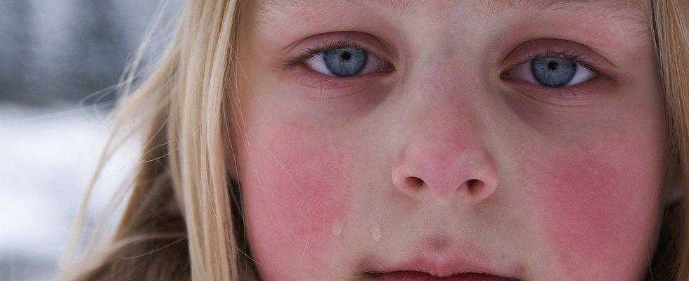 Llama, Llama Preschool Drama: 10 Tips on How to Cope