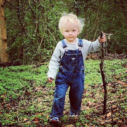 He Loves a Good Stick