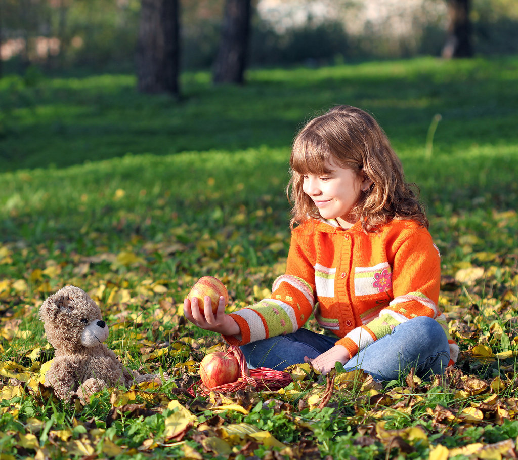 Enjoy a Teddy Bear Picnic