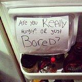 Or Bored
