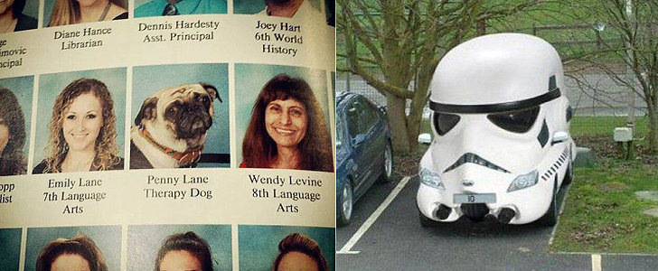 A Dog With Its Own Yearbook Photo, Plus More of the Week's Best Pics