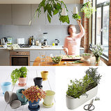 7 Cool Herb Gardens For Small Spaces