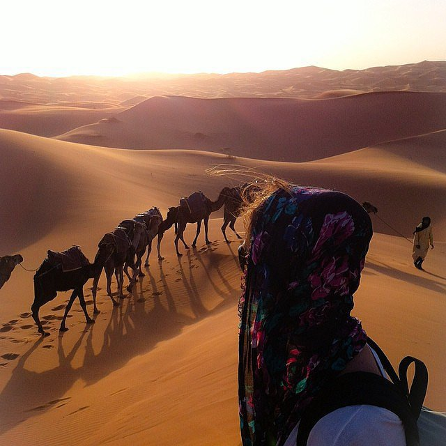Explore the Sahara Desert