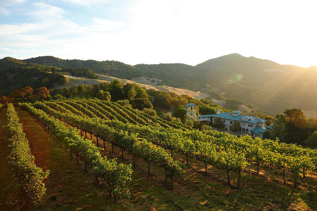 If you enjoy a smooth glass of Chardonnay, you'll appreciate the vineyard views of Robin Williams's Napa, CA, mansion. Source: TProperty listing by Joyce Rey and Cyd Greer for Coldwell Bankers Previews International